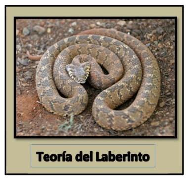 Teoría del Laberinto